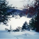 3 Tips for a Healthy and Joyful Holiday Season